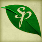 Aromatherapy Company