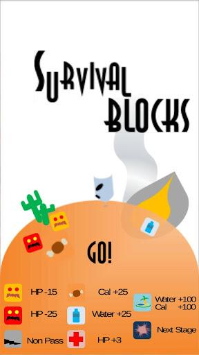 Survival Block