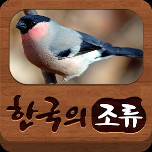 한국의 조류(Birds of Korea) 아이콘