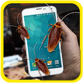 Cockroach Prank in Phone