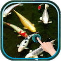 Magic Touch Koi Fish icon