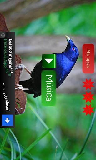 【免費音樂App】SenseDroid-APP點子