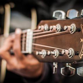 Washburn by Naveen Rai - Artistic Objects Musical Instruments ( guitar, washburn, , object, musical, instrument )
