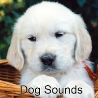 Dog Sounds 1.1.6