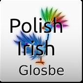 Polish-Irish Dictionary