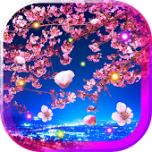 Sakura Trees HD live wallpaper