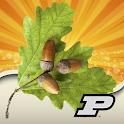 Purdue Tree Doctor icon