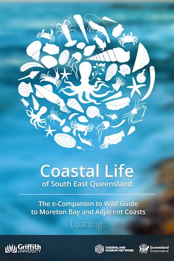 Coastal Life of SE Queensland