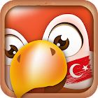 Learn Turkish Phrases & Words icon