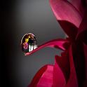 LWP gota de chuva icon