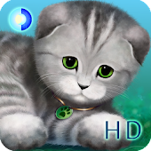 Silvery the Kitten HD
