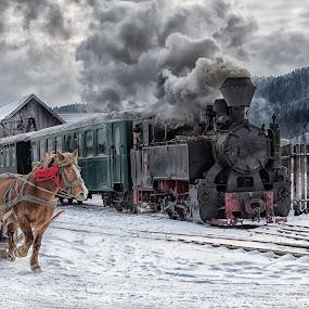 Snow Run by Pascal Hubert - Transportation Trains (  )