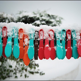 Snow Pegs by Jim Moran - Digital Art Things ( sky, yard, snow, line., pegs )