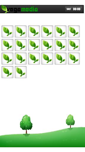 VegaPuzzle