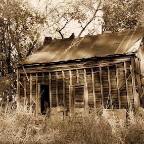 Old Cabin by Eva Ryan - Buildings & Architecture Decaying & Abandoned ( cabin, empty, route 66, old places, abandoned,  )