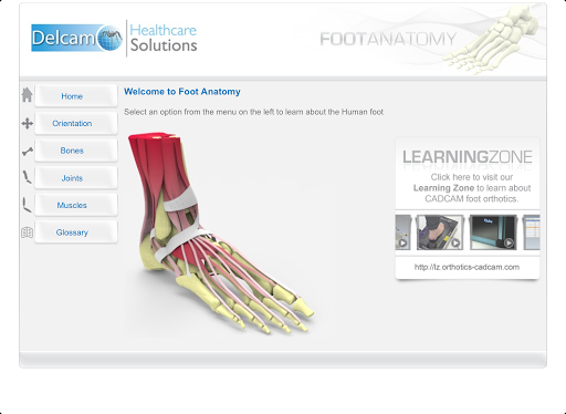 【免費醫療App】Foot Anatomy-APP點子