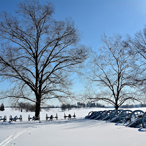 VALLEY FORGE WINTER by Bethany Kenney - Landscapes Travel ( winter, cannons, trees )