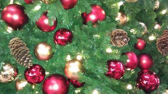 Santa Roberts- screenshot thumbnail