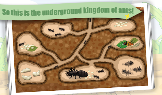 Ant - Insect World - náhled