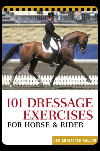 101 Dressage - screenshot