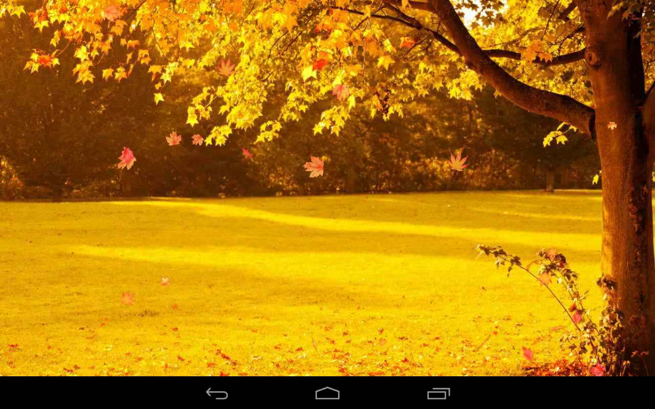 Autumn Wallpaper- screenshot