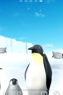 Penguin Live Wallpaper Trial - screenshot thumbnail