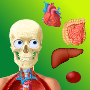 Puzzle Anatomy (learning game) for PC and MAC