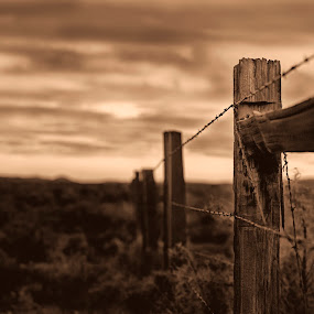 Can't Fence Me In by M Knight - Artistic Objects Other Objects ( fence, sepia, post, wood, barbed wire, western )