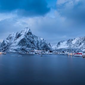 reine by Ennio Pozzetti - Landscapes Mountains & Hills ( calm, water, mountains, winter, reine, blue hour, sea, seascape, trip, lofoten, norway,  )