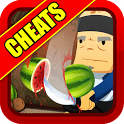 Fruit Ninja Cheats icon