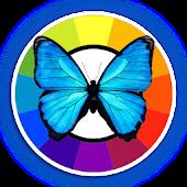 Butterfly Clock Daydream