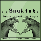 Oldschool snake game