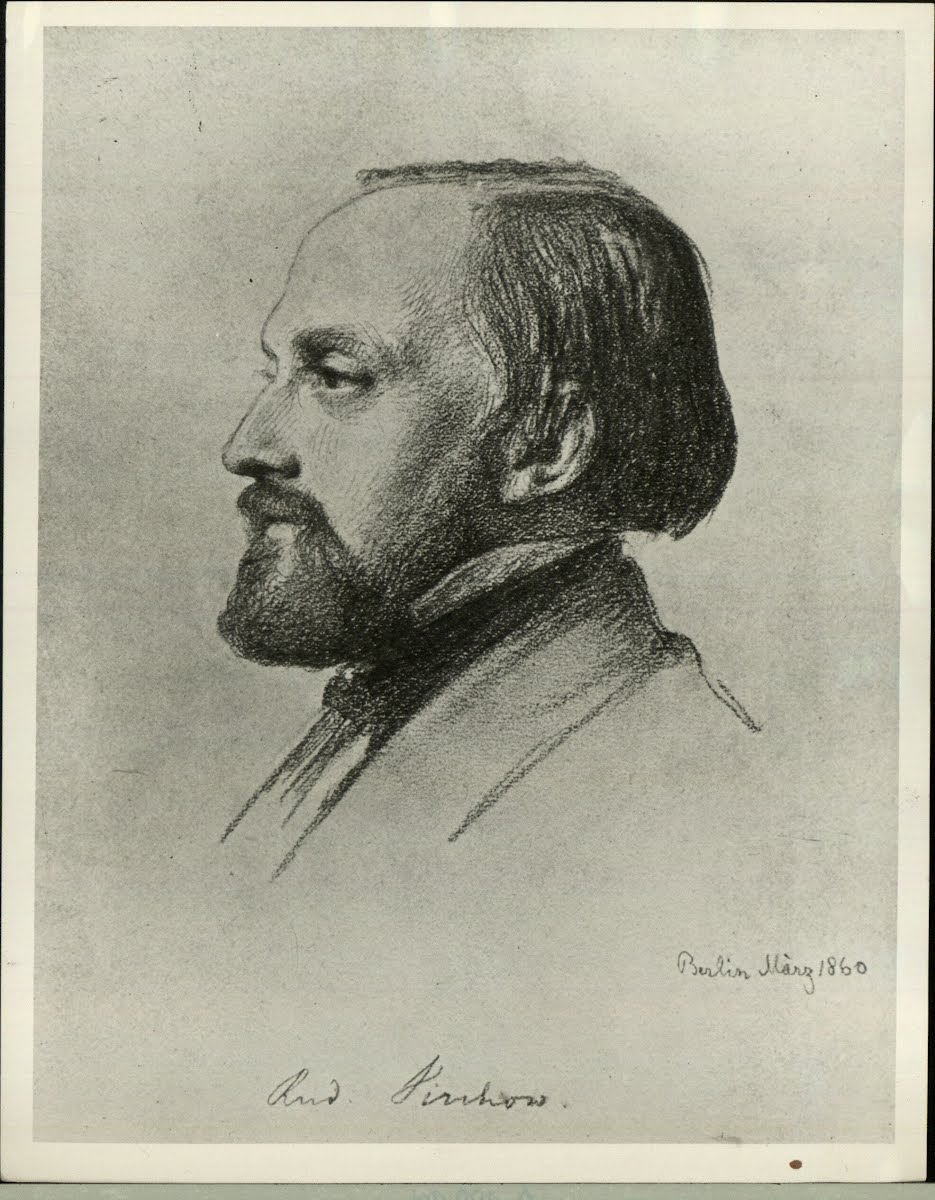 Virchow Prof. Rudolph Ludwig Karl 1821-1902 German Pathologist
