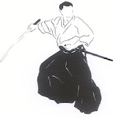 Learn aikido