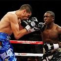 boxing Jigsaw
