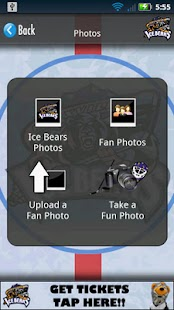 The Knoxville Ice Bears- screenshot thumbnail