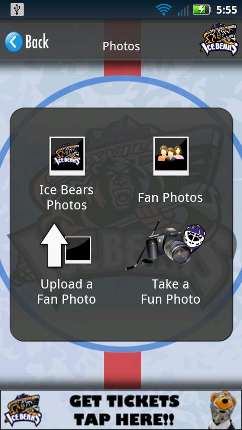 The Knoxville Ice Bears- screenshot