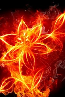 Burning Fire 3D Live Wallpaper - screenshot thumbnail