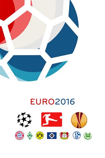 年歐錦賽2016