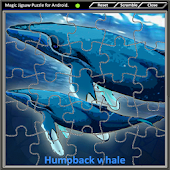 Magic Jigsaw Puzzle 3