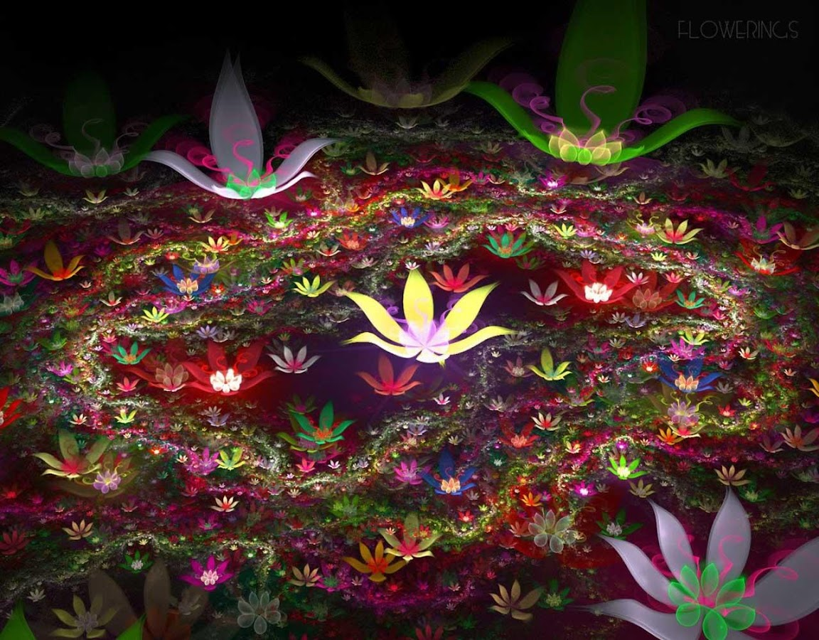 sparkling flower 3d - android apps on google play