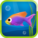 Best Hungry Fish icon