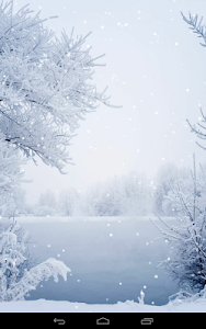Winter Wallpaper screenshot 8