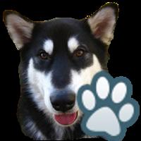 Dog Breeds 0.2.4