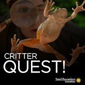 Critter Quest