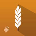 Grain Crazy icon