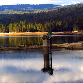 Bass Lake Dam reflection by Janet Martinez - Landscapes Waterscapes ( reflection, dam, lakes )