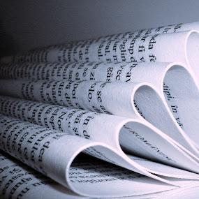 Book by Ioana Sidonia - Uncategorized All Uncategorized ( white, artificial, light, black )