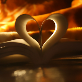 Flaming Heart by Muhammad Habib Ul Haque - Artistic Objects Other Objects ( love, books, heart, passionate, valentines, flamingo, award, flaming heart, top 1, flamingos, fire, love birds,  )