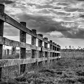 Along the fence. by Per-Ola Kämpe - Black & White Landscapes ( clouds, field, fence, b&w, sky, grass, landscape,  )